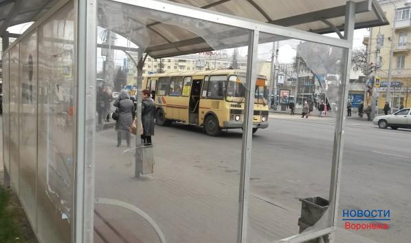 Воронежский транспорт пустят