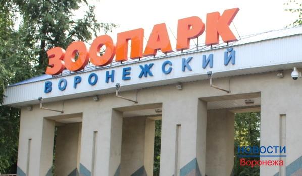 Воронежский зоопарк.