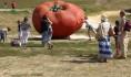 Сельский туризм будут развивать в Воронежской области.