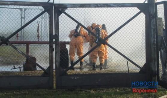 В Воронежской области продолжают разбираться с выбросом аммиака.