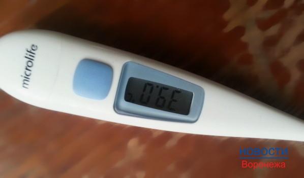 Люди заболевают ОРВИ и гриппом.