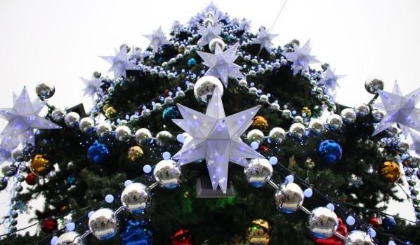 Главная новогодняя ёлка Воронежа.
