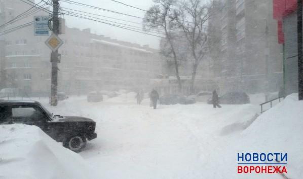 Воронежцев ожидает метель.