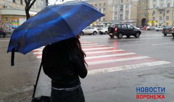 Ввыходные вРязани похолодает ипойдут дожди