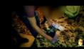 Уроженец Средней Азии попался на распространении наркотиков.
