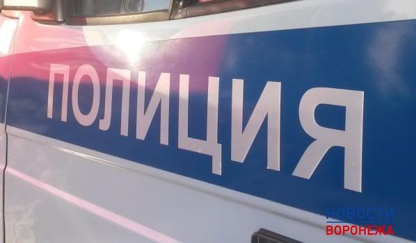 ВВоронежской области словили преступников, укравших контрабас изДК