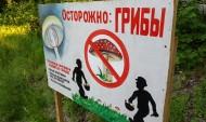 Воронежцам отменили незаконные постановления о штрафах.
