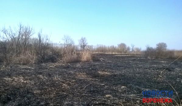Гражданин Воронежской области, спасаясь отзмей, устроил пожар