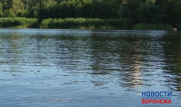 ВВоронежском водохранилище потонул нетрезвый мужчина