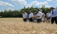 В регионе прошла сельскохозяйственная перепись.