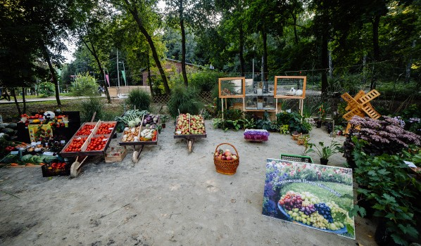 Воронежский фестиваль «Город-сад» 2017 года.