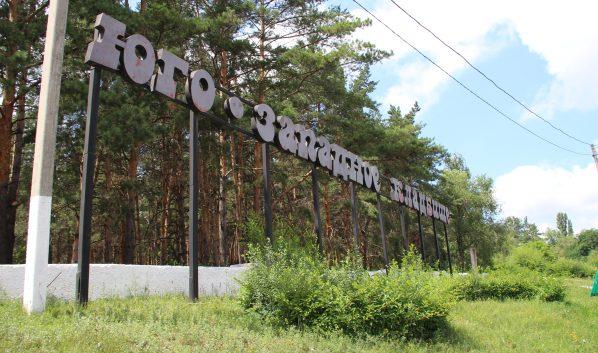С территории Юго-Западного кладбища убрали 195 деревьев.