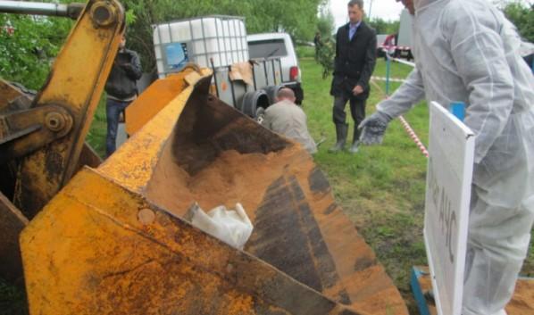 Вчетырех районах Омской области сняли карантин почуме свиней