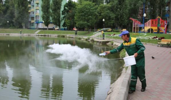 Вносят бактерии в озеро.