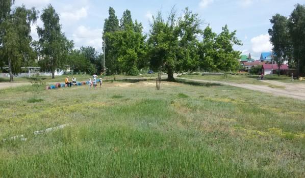 Сейчас место будущего парка выглядит так.