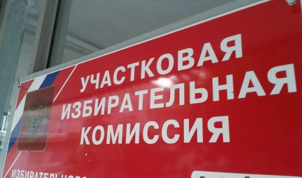 Явка навыборы органов местного самоуправления вВоронежской области— практически 49%