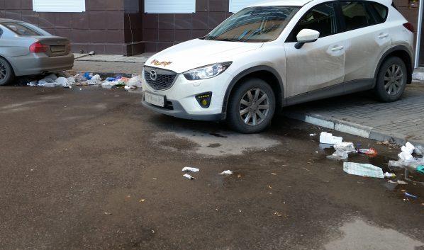 Воронежцы признали наш город грязным.