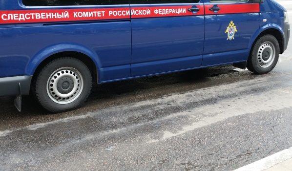 ВВоронежской области обнаружили тело убитой 14-летней девушки