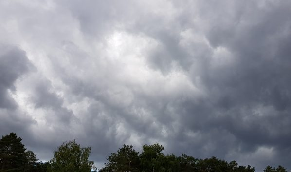 Половину недели в Воронеже будет пасмурная погода.