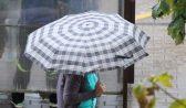 В Воронеже будет дождливо.