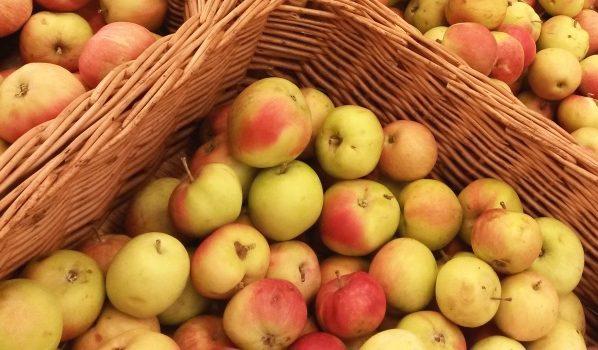 Яблоки лежали в коробках в гараже.