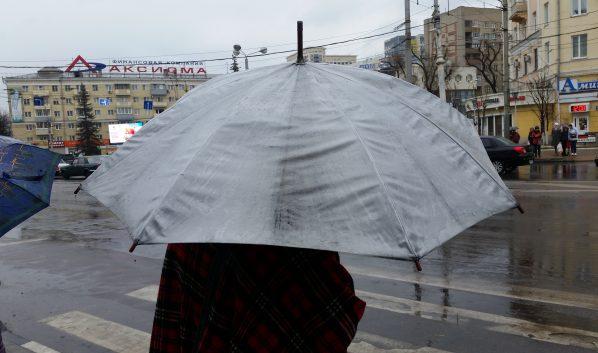 В воскресенье пройдут дожди.
