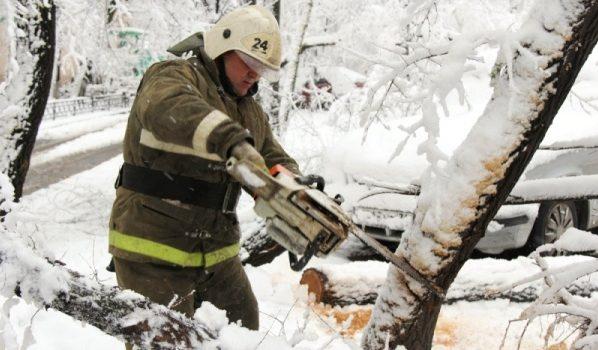 Спасатели распиливают деревья.