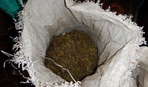 У мужчины на чердаке нашли марихуану.