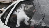 Ребенок сидел один в холодном авто.