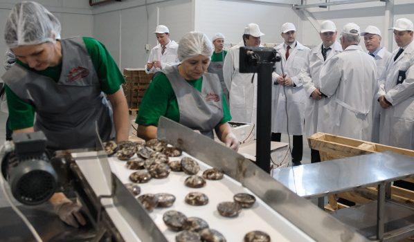 Александр Гусев посетил Новоусманский район.