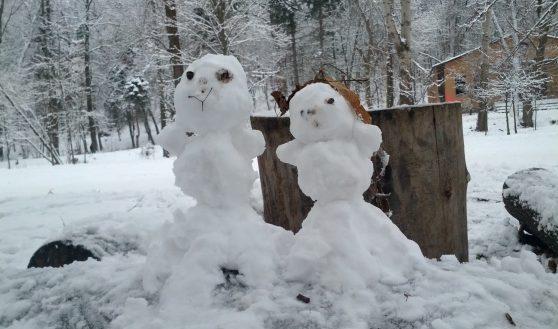 Вы тоже ждете снега?