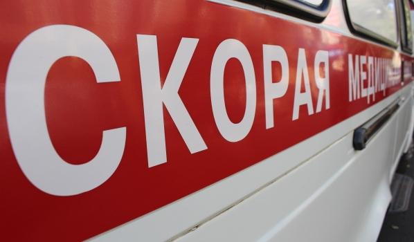 Пешеход скончался до приезда медиков.