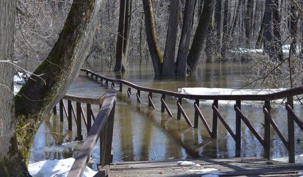 Экотропы затопило водой.