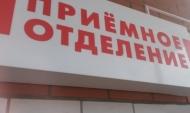 Воронежцы обращаются к медикам после укусов клещей.