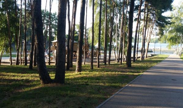 Парки Воронежа обрабатывают от комаров и клещей.