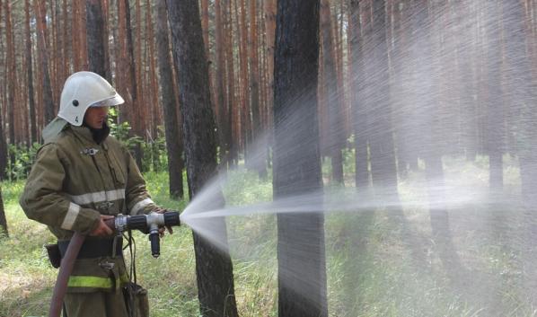 Пожарные справились с возгоранием.