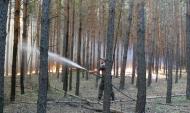 Лесные пожары крайне опасны.