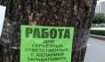 Специалисты проанализировали рынок работы в Воронеже.