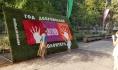 Международный фестиваль «Город-Сад» в Воронеже посетило почти 280 тысяч человек.
