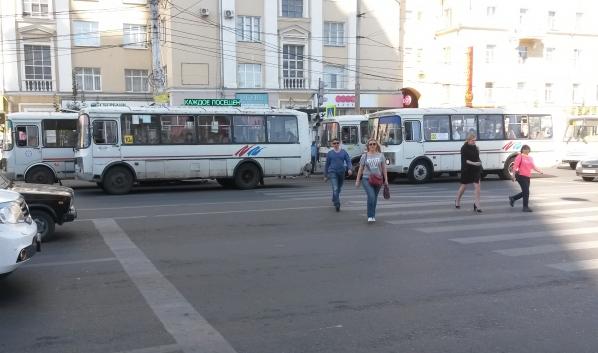 В центр города будет ходить больше автобусов.