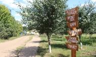 В Воронежской области создадут свой экопарк.