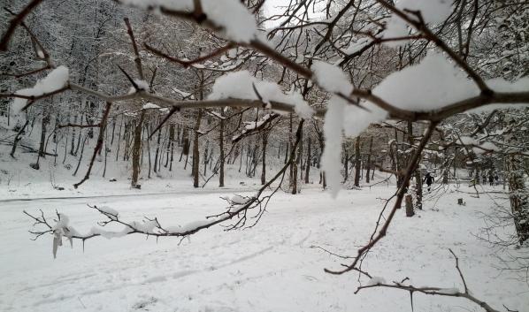 Воронежцев ожидают снежные выходные.