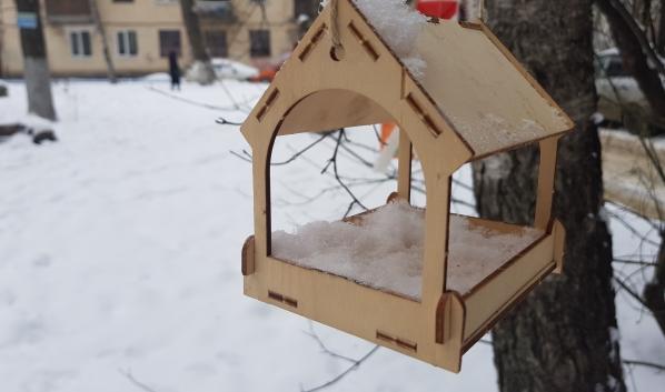 Мороз в Воронеже.