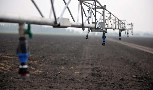 В регионе хотят выращивать органическую продукцию.