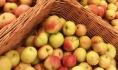 Яблоки уничтожили.