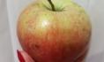 Яблоки сняли с продажи.