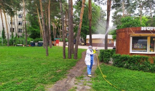 Обработка парка от насекомых.