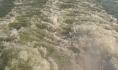Воронежец утонул в реке.