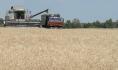 Аграрии собирают урожай.