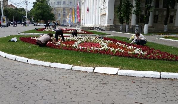 Илья Варламов был бы не против жить в Воронеже.